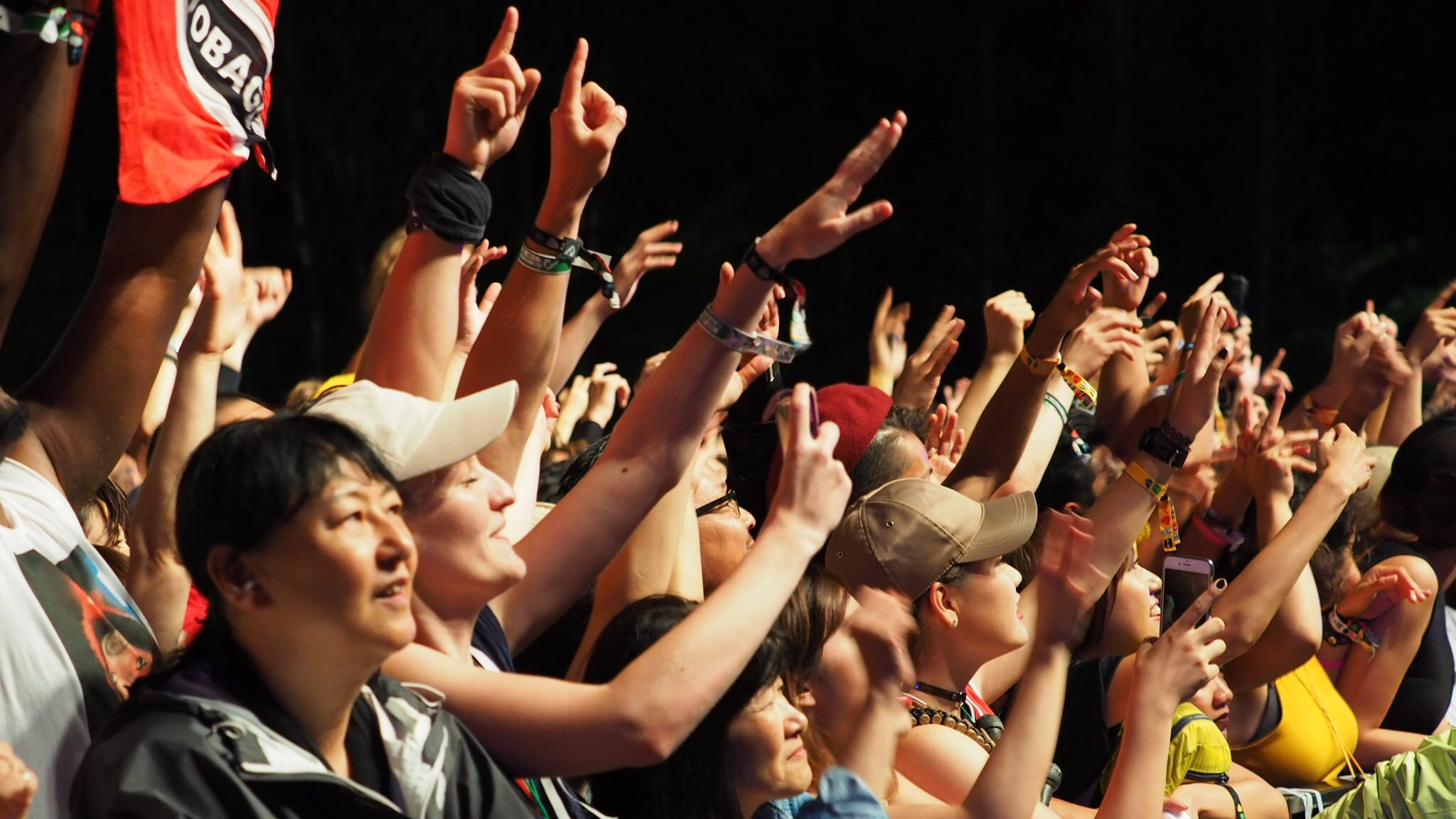 fuji rock crowds
